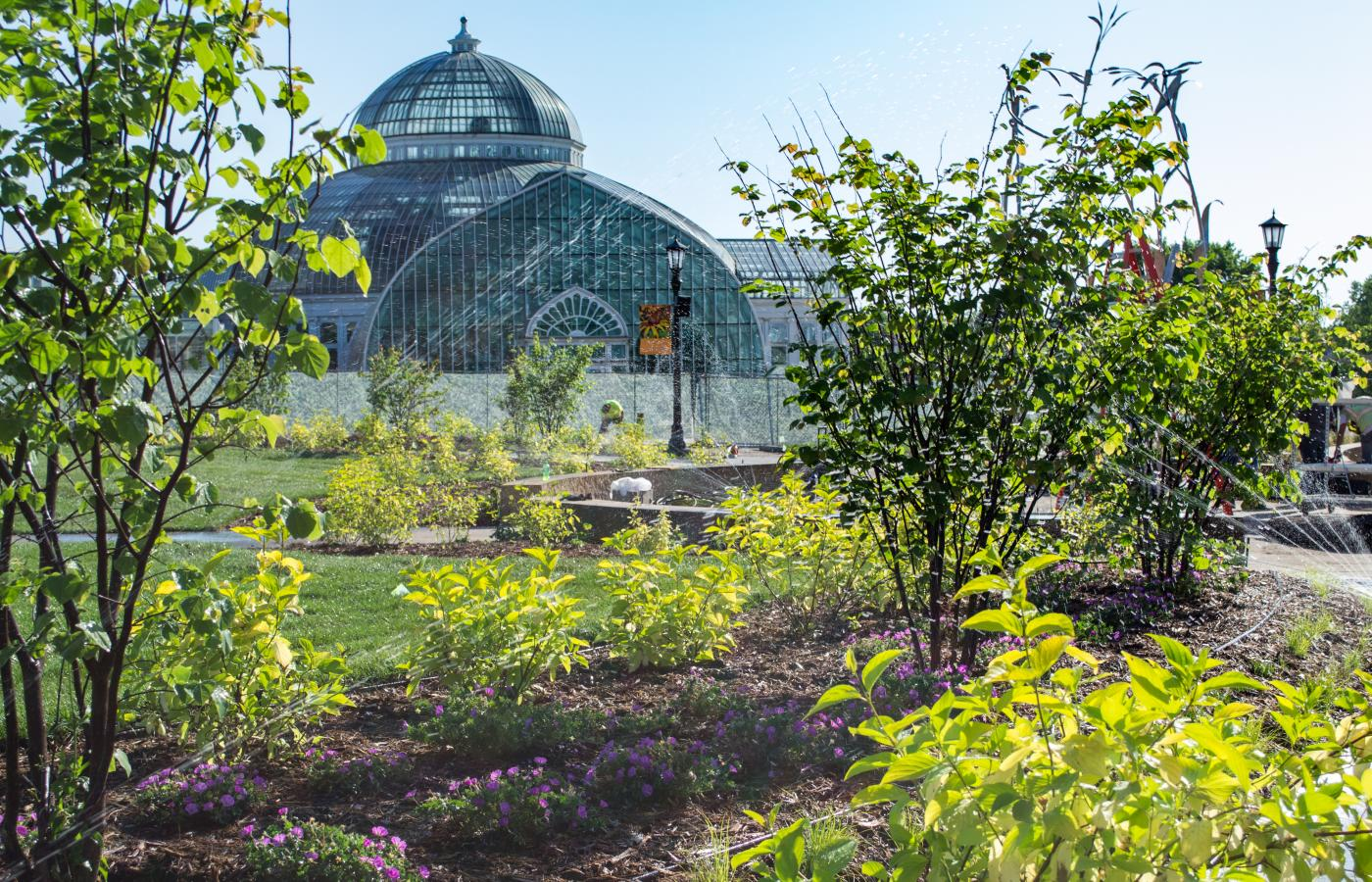 Minnesota Garden at Como Park - 8