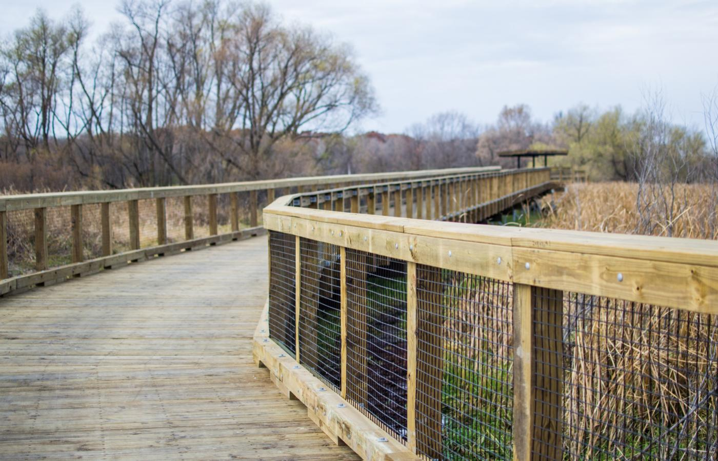 Northwest Greenway Boardwalk - 2