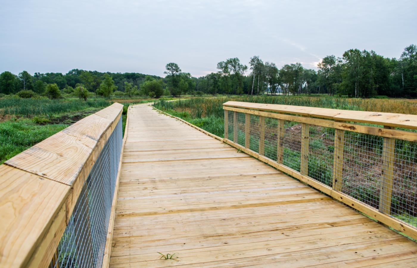 Blaine Wetland Boardwalk - 5
