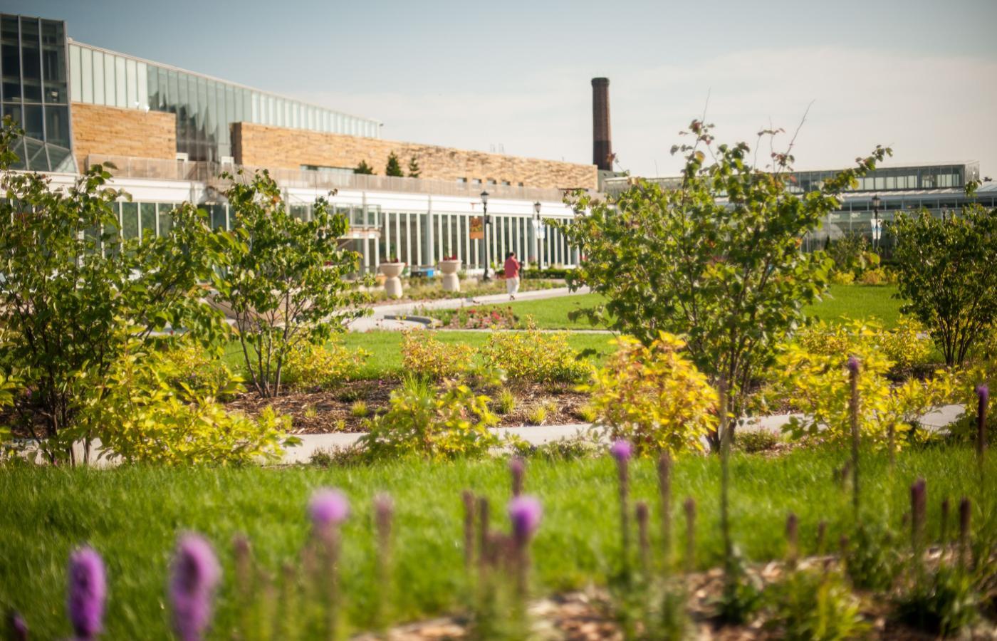 Minnesota Garden at Como Park - 6