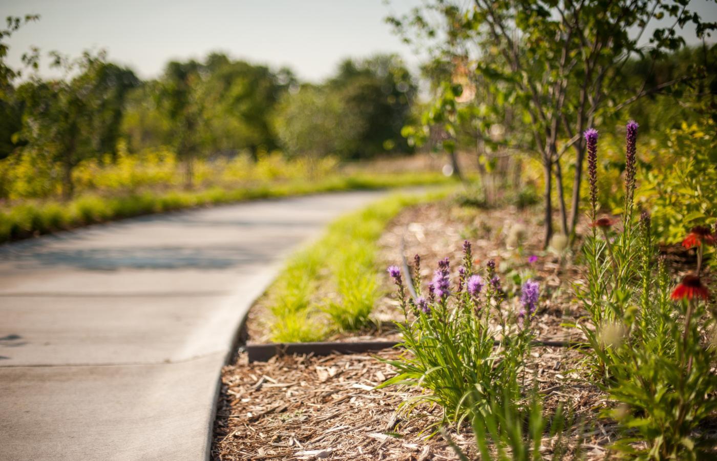 Minnesota Garden at Como Park - 7